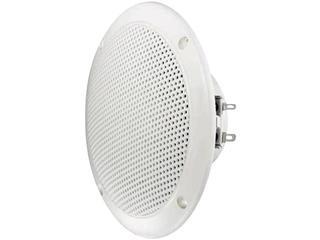 """FR 13 WP – 4 Ohm, 5"""" Waterproof White Speaker"""