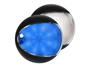 Blue / White EuroLED 130 – Black Rim Dual Color LED Touch Lamp